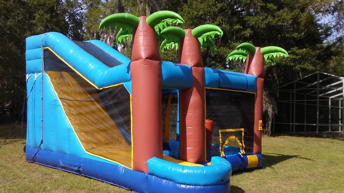 Dry Inflatable Slide Rental Gainesville Florida